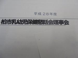 DSC08841 (400x300)