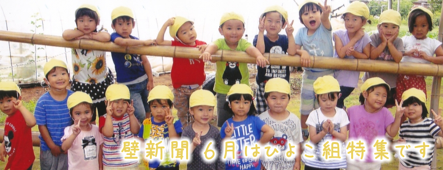 くりの木壁新聞 6月ひよこ組特集