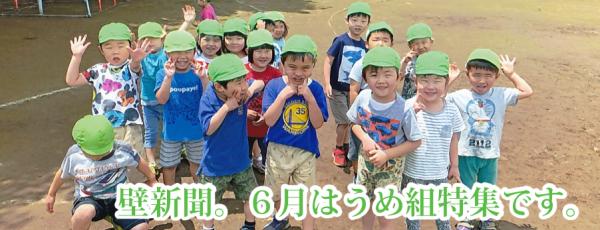 くりの木壁新聞 6月うめ組特集