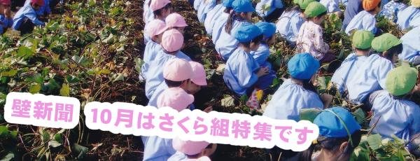 くりの木壁新聞 10月さくら組特集
