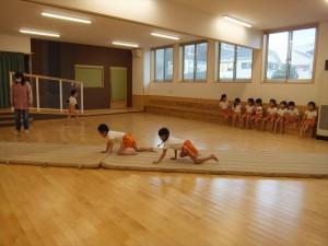 g中体育 (4)