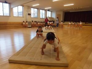 g中体育 (9)