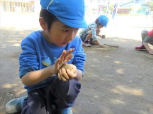 g長だんご (6)